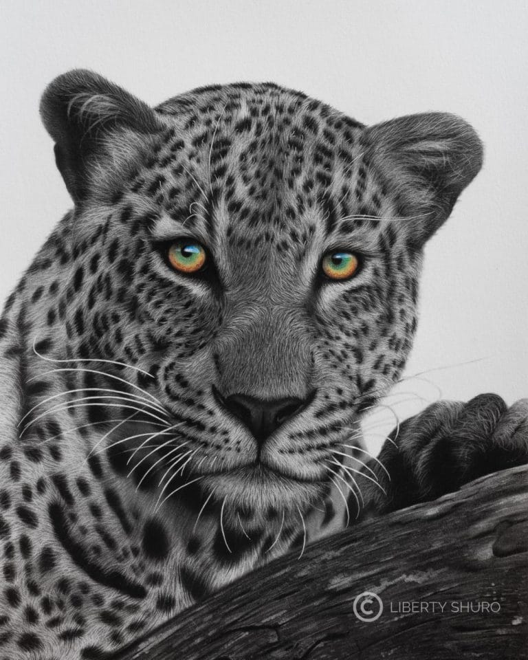 Mighty Leopard