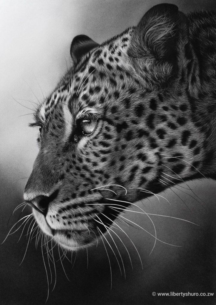Mashatu Leopard